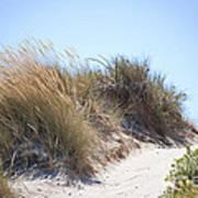 Beach Sand Dunes I Poster