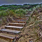 Beach Stairs Poster by Joanne Kocwin