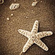 Beach Star Poster