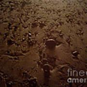 Beach Stones At Night Poster