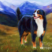 Bear - Bernese Mountain Dog Poster by Michelle Wrighton