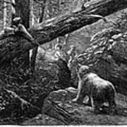 Bear Hunt, 1876 Poster by Granger