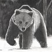 Bear Necessities Poster
