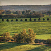 Beautiful Landscape With Trees And Field Poster