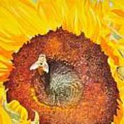 Bee And Sunflowers Poster
