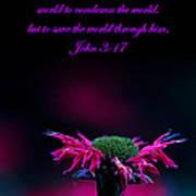 Bee Baum John 3 17 Poster