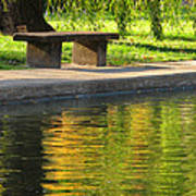 Bench And Reflections In Tower Grove Park Poster