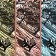 Bench In The Park Triptych  Poster by Susanne Van Hulst