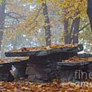 Benches And Table In Autumn Poster