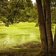 Bent Twig 5 Poster