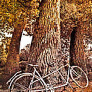Bicycle Built For Two Poster