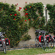 Bicycles Parked By The Wall Poster