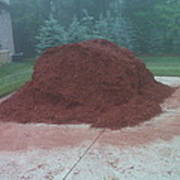 Big Pile Of Mulch Time Poster