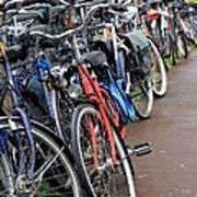 Bike Frenzy Poster