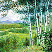 Birch Trees Painting By John Lautermilch