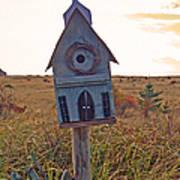 Bird Sanctuary Poster