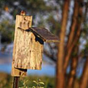 Birdhouse 23 Poster