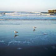 Birds At Dusk Vanilla Pop Poster