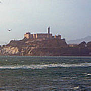 Birds In Free Flight At Alcatraz Poster