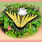 Birthday Greeting Card - Tiger Swallowtail Butterfly Poster
