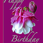 Birthday Greeting Card - Columbine Flower Poster