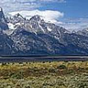 Bisons Grazing Under The Grand Tetons Poster