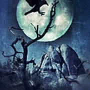 Black Bird Landing On A Branch In The Moonlight Poster