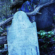 Black Bird Perched On Old Tombstone Poster