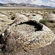 Black Rock Desert Poster