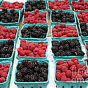 Blackberries And Rasberries - 5d17827 Poster by Wingsdomain Art and Photography