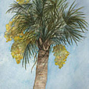 Blooming Palm Poster