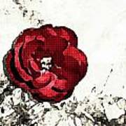 Blotted Rose Poster
