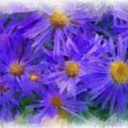 Blue Asters - Watercolor Poster