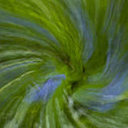 Blue Bells Vortex 4 Poster