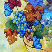 Blue Butterflies And Grapevine  Poster