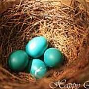 Blue Eggs In Nest Poster