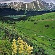 Blue Grouse Pass, Willmore Wilderness Poster