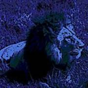 Blue Simba Poster