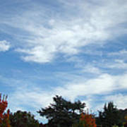 Blue Sky White Clouds Autumn Prints Poster