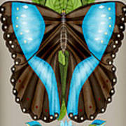 Blue Tiled Butterfly Poster
