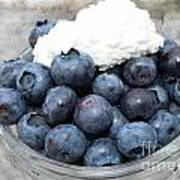 Blueberries And Cottage Cheese Poster