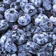 Blueberries  Poster