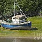 Boat On Banks Of Dee Poster