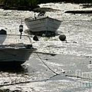 boats at low tide in Cape Cod Poster