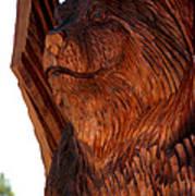 Bobcat Closeup Poster
