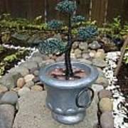 Bonsai Tree Medium Silver Vase Poster