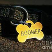 Boomer Gear Poster