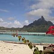 Bora Bora Private Beach Poster