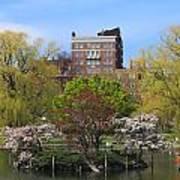 Boston Public Garden Pond In Spring Poster