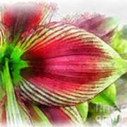 Botanical 01 Poster